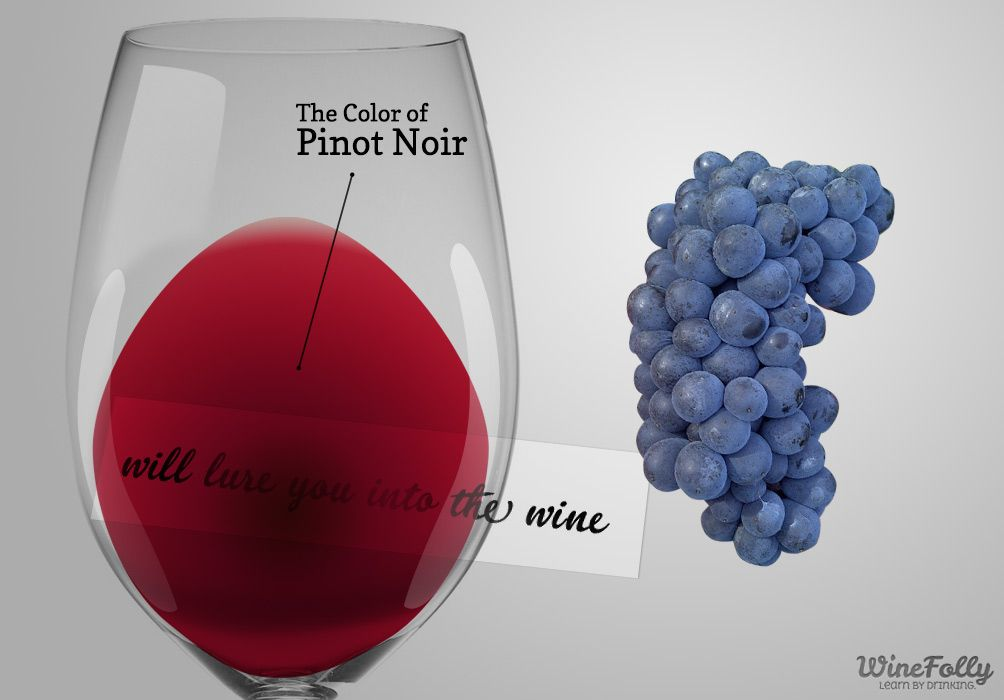 The Colour of Pinot Noir © Wine Folly
