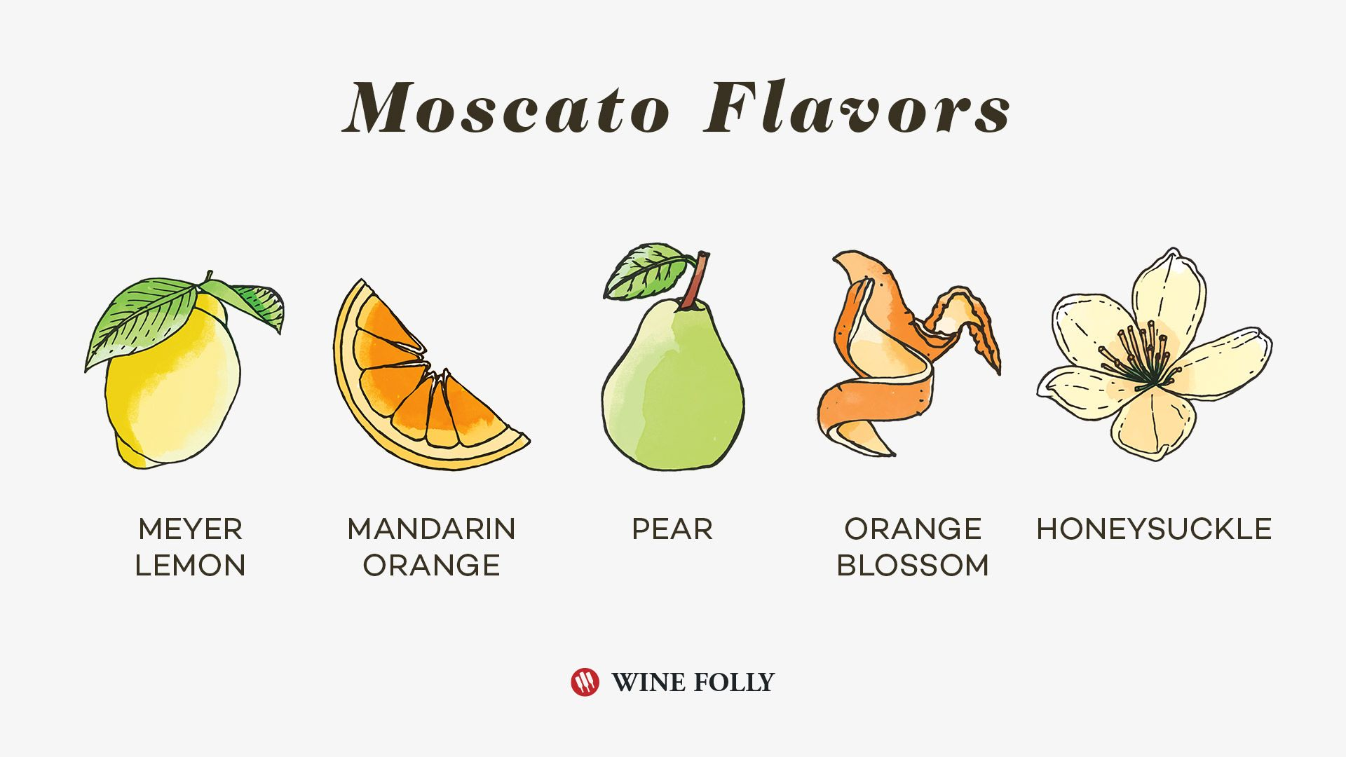 Moscato flavours (Wine Folly)
