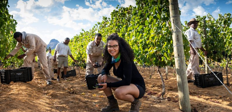 Kiara Scott in the vineyard. Image courtesy of Wines of South Africa.